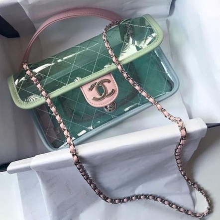Transparent Bag- Chanel $2,600
